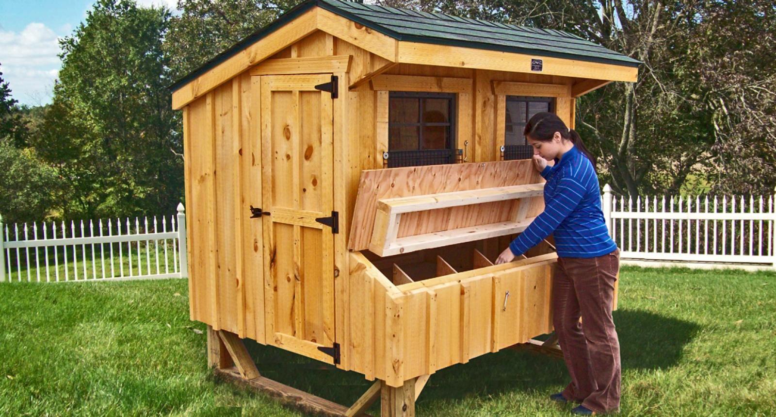 Quaker Chicken Coop Chicken Houses For Sale Horizon Structures Chicken Coop Chickens Backyard Chicken Coop Plans