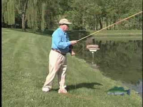 Fly Casting Basics Part1 Youtube Fly Fishing Lessons Fly Fishing Flies Trout Fly Fishing Tips