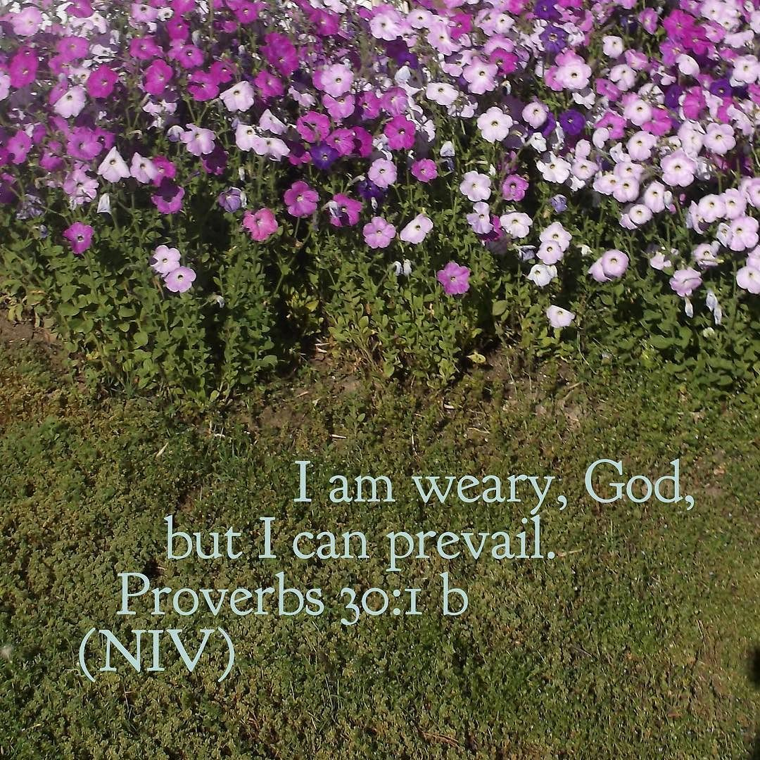 Image result for proverbs 30:1b
