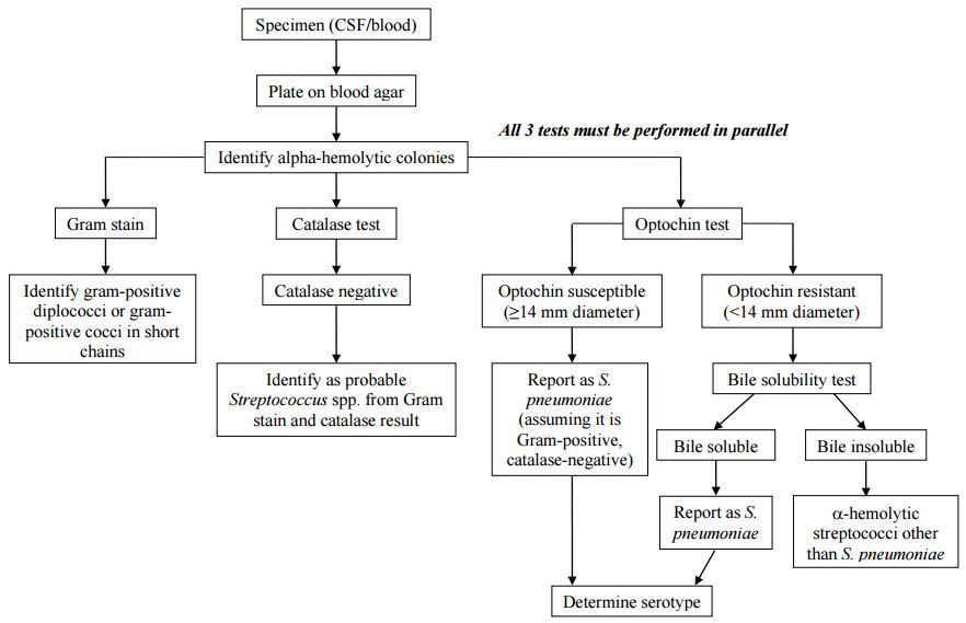 Top Flow Chart For Identifying Wallpapers Lab Humor Pinterest