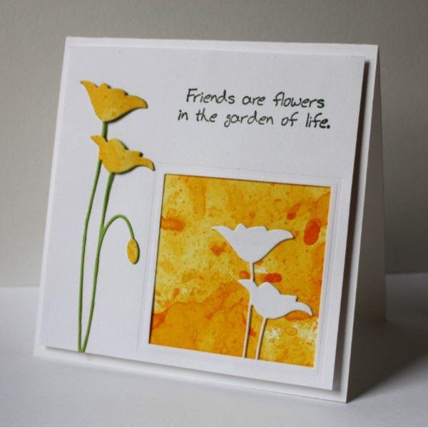 CAS365...No Daffodils Today
