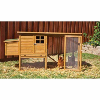 Aspen Pet Flat Top Complete Chicken Coop 9 Bird Capacity
