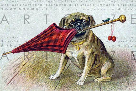 Lovely Pug Puppy Printable Vintage Image Dog Vintage Etsy In 2020 Pug Dog Puppy Vintage Dog Pug Puppy