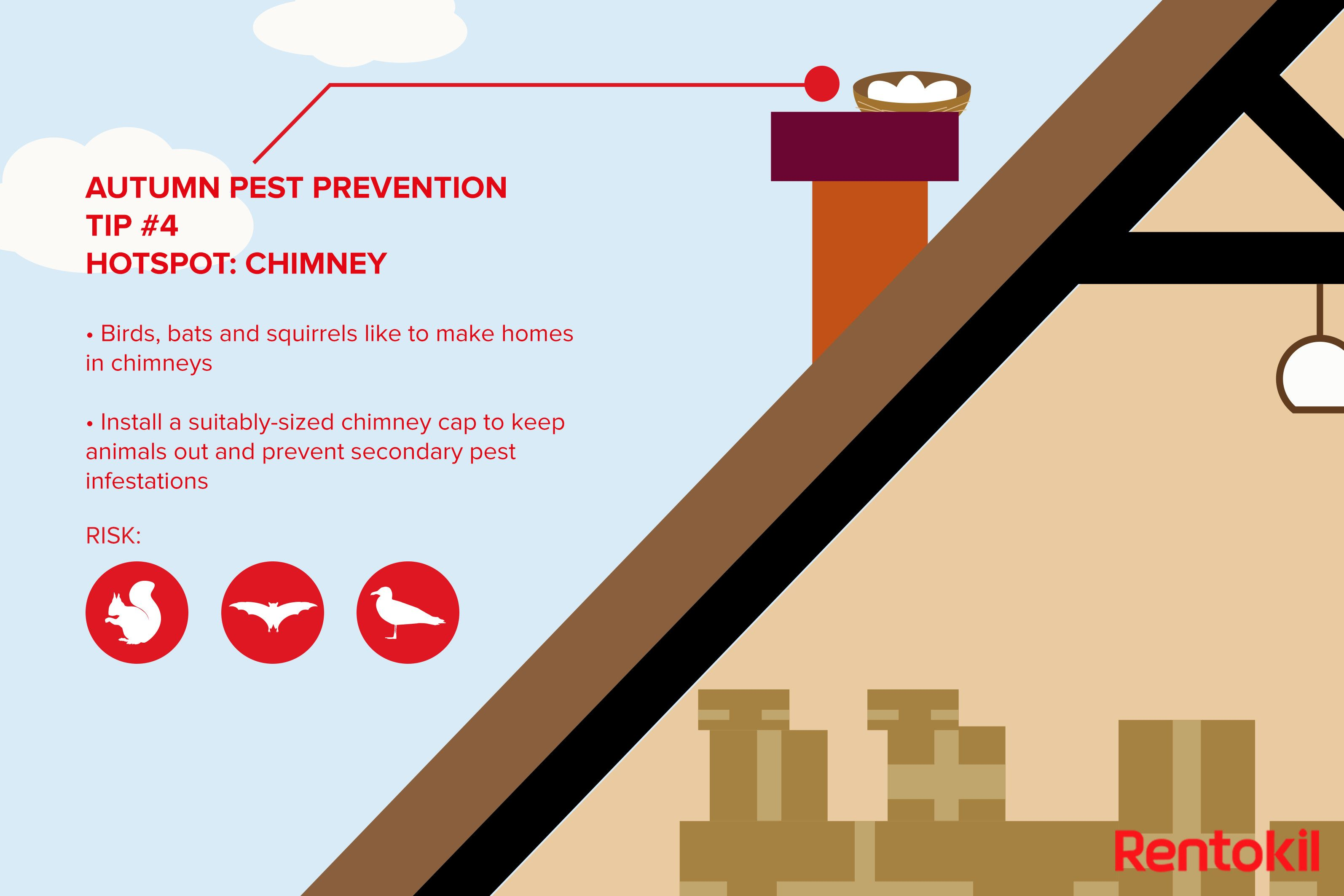 An Introduction To Chimney Removal In 2020 How To Remove Chimney Sweep Construction Work
