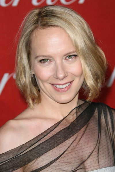 amy ryan adams
