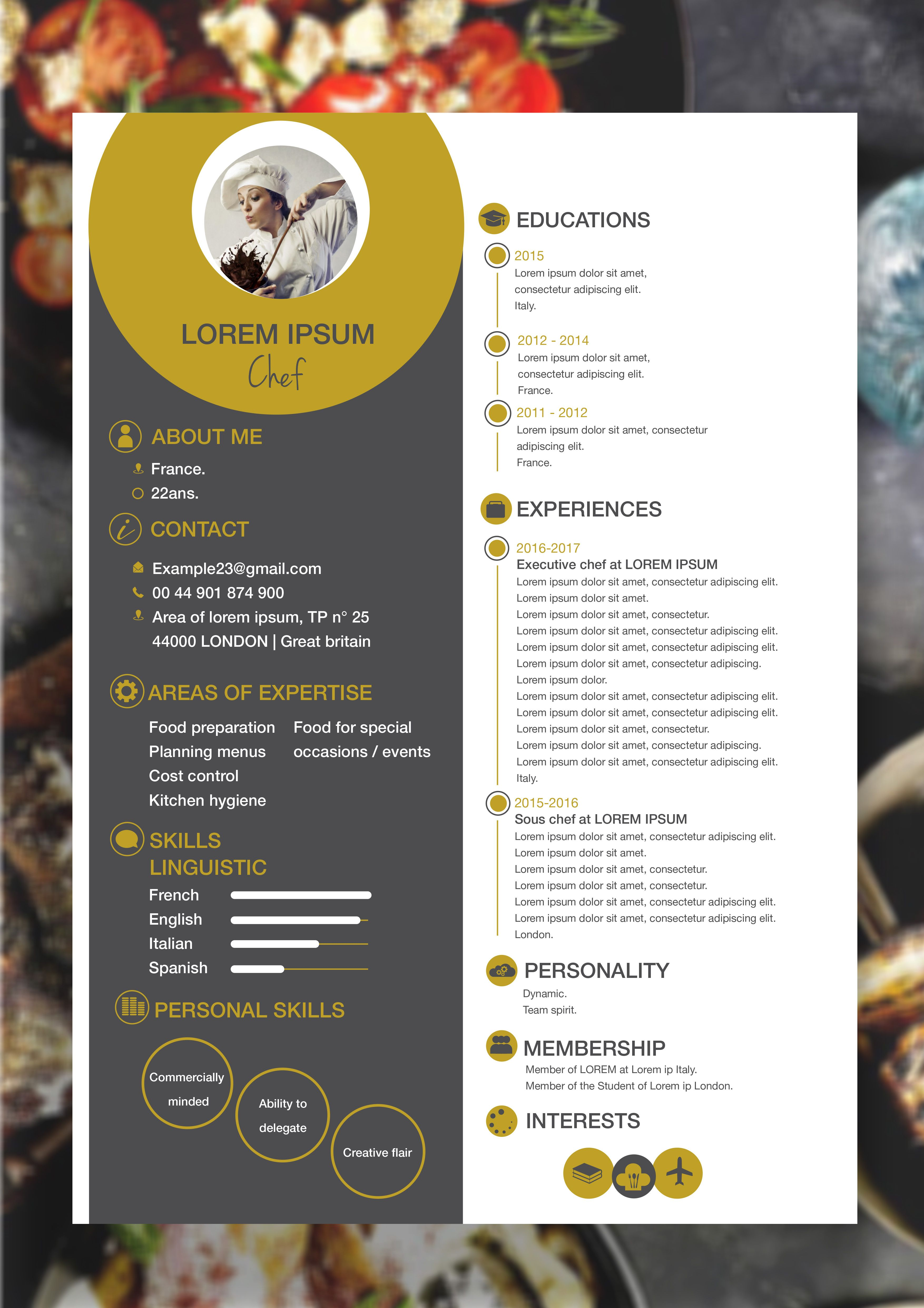 resume templates for a chef
