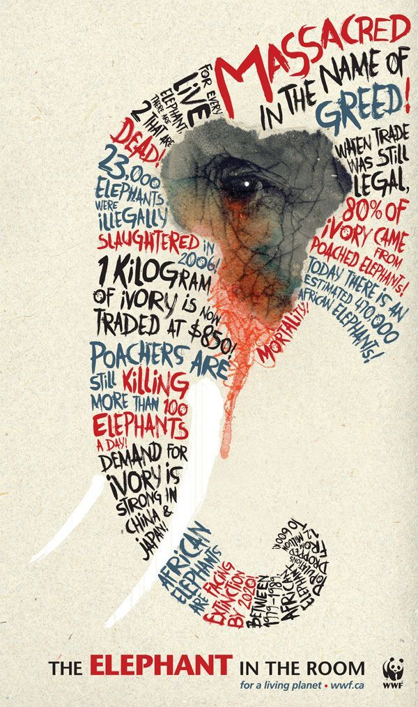 Massacred in the Name of Greed. elephant endangered