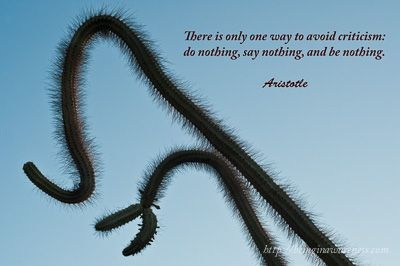 There is only one way to avoid criticism: do nothing, say nothing, and be nothing. Aristotle