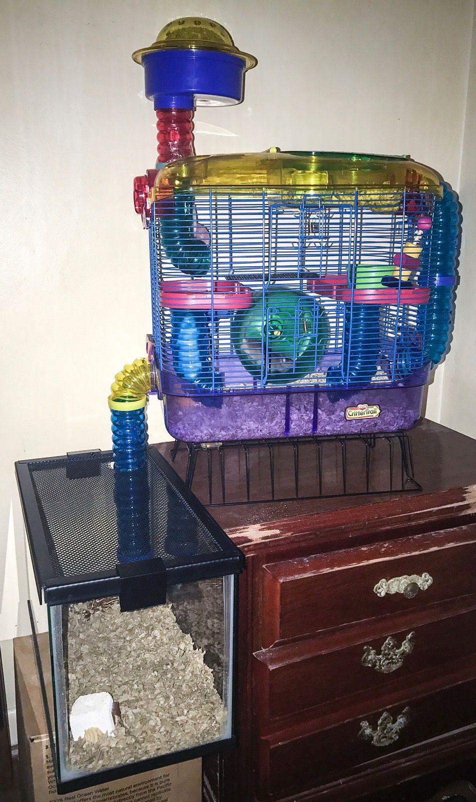 modified two level habitat crittertrail with add on tubes into a 5