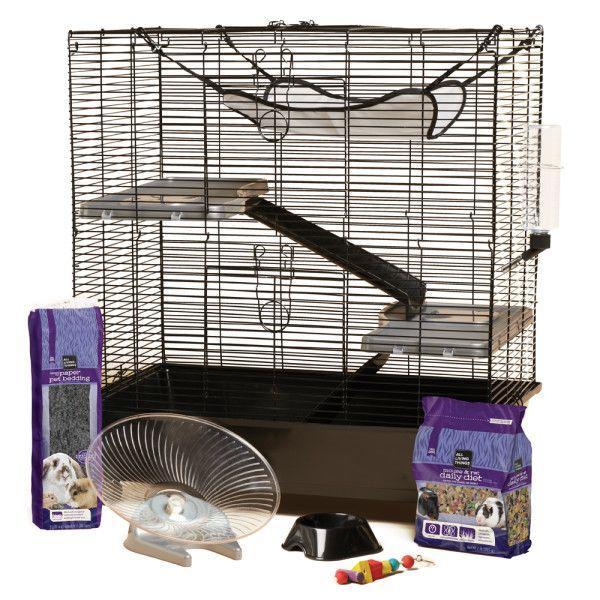 Rat Starter For Hamster Puppy Starter Kit Petsmart Small Pets