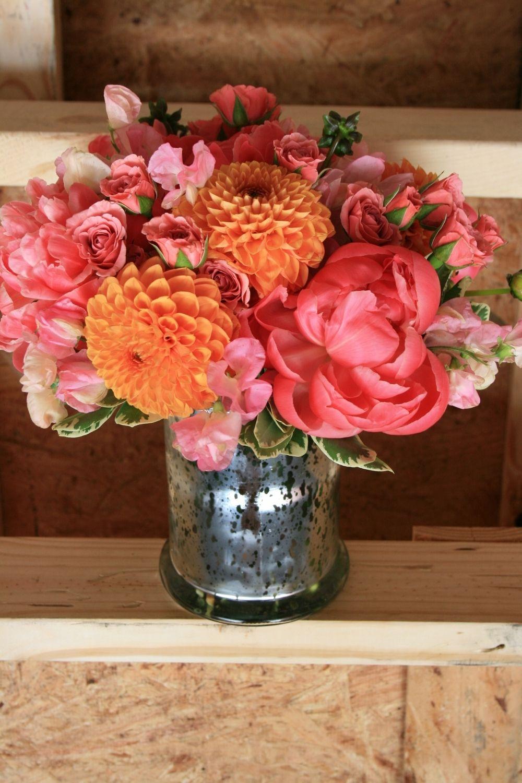 Gallery Luna Vinca Sweet pea flowers, Coral charm