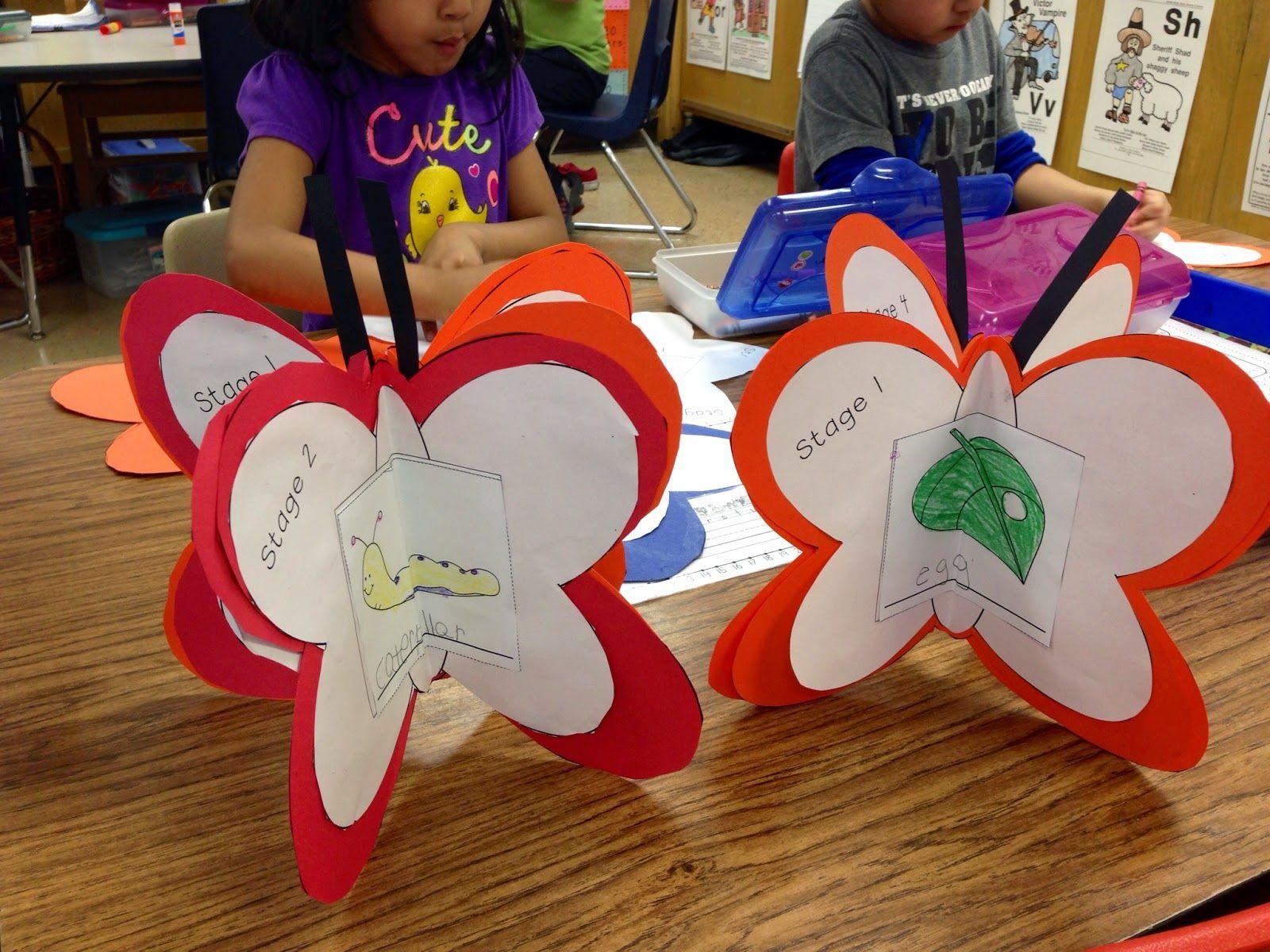 metamorfosis de la mariposa actividad 2
