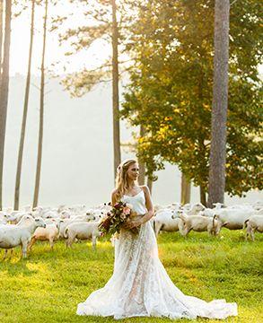 Stems Styles Sweet Seasons Farm Nick Frontiero Photography Alabama Weddings