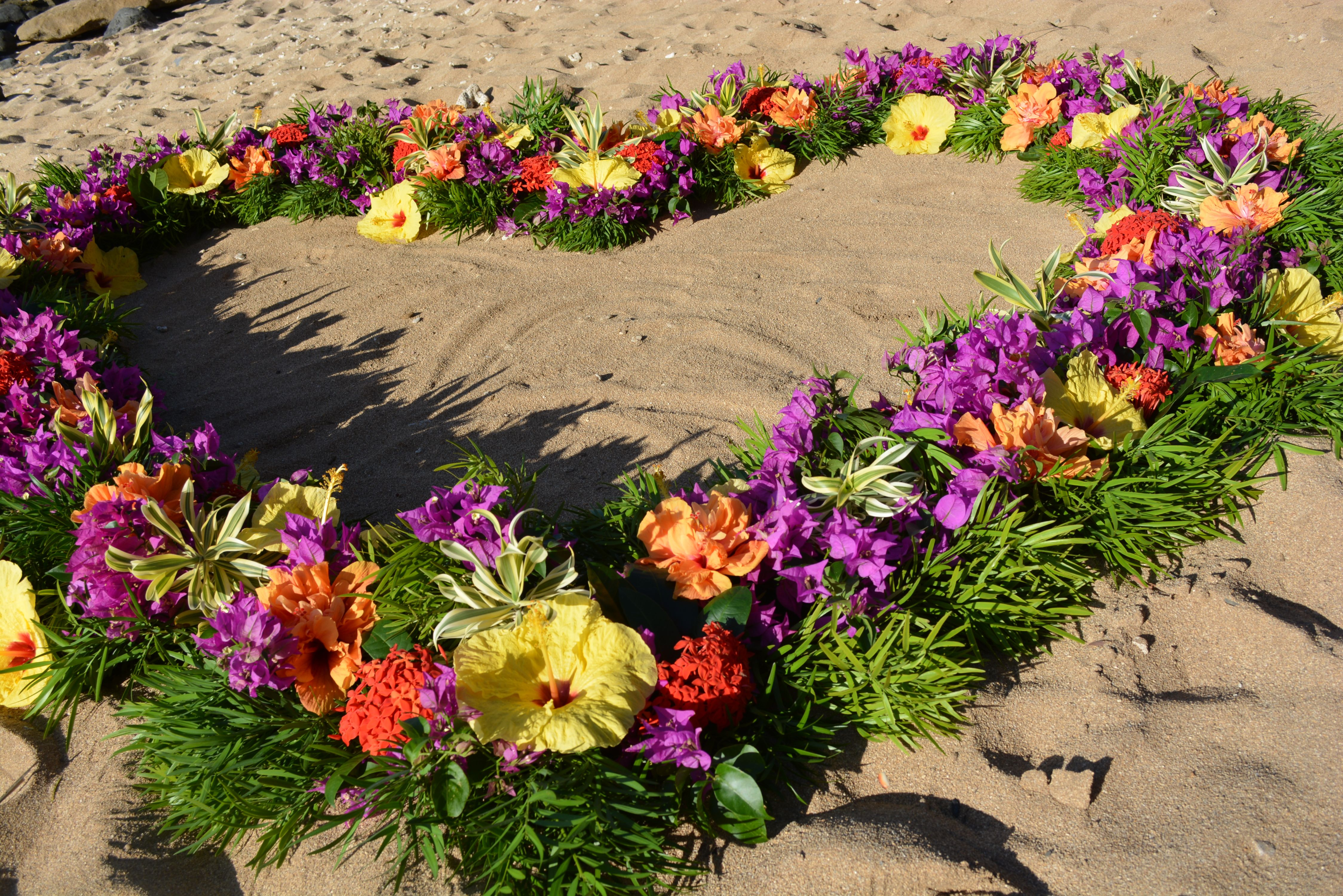 Vivid Tropical Flowers Of The Garden Variety On A Bed Of Greenery