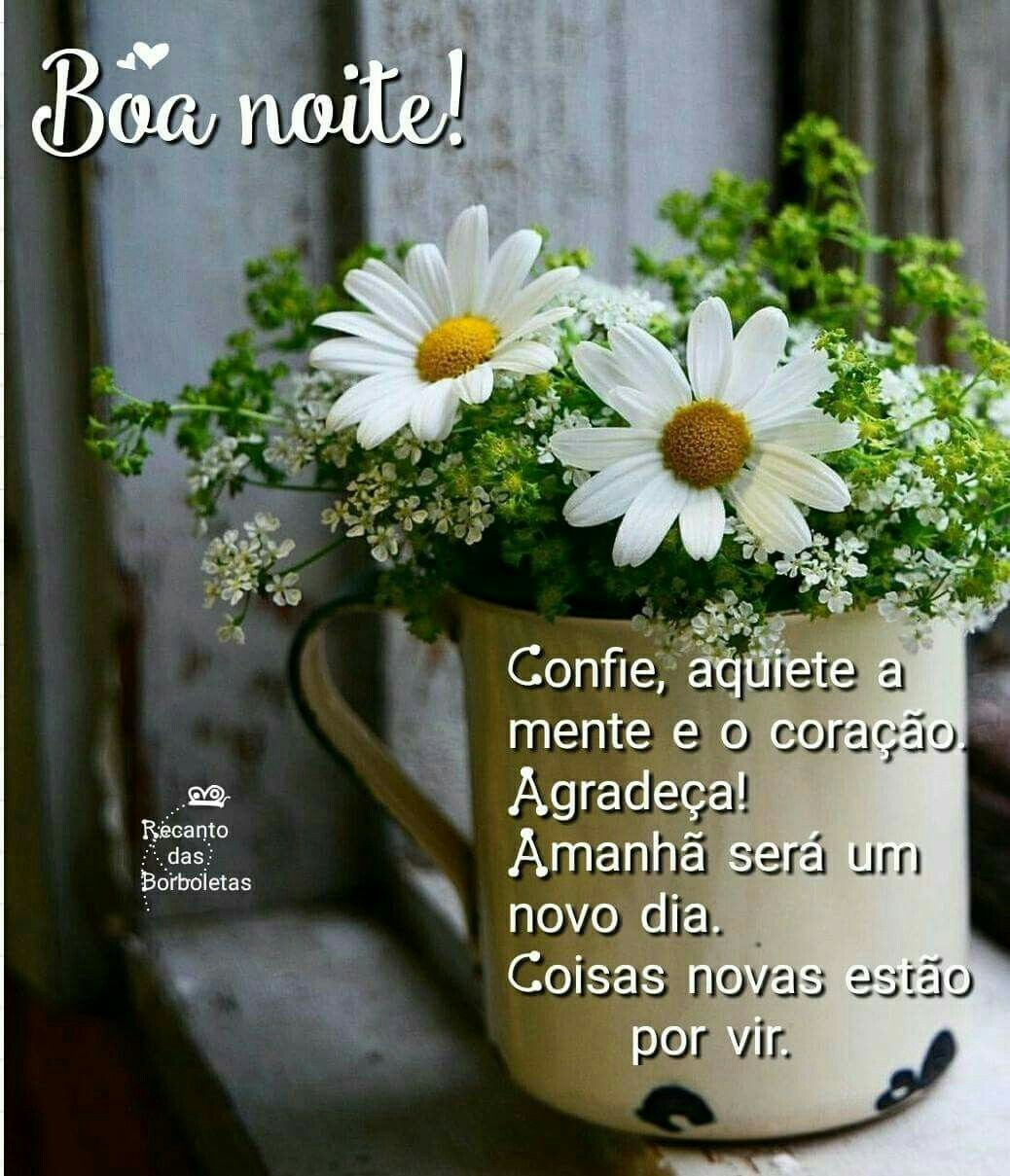 Boa Noite Margaridas Arranjos De Flores Vasos De Flores