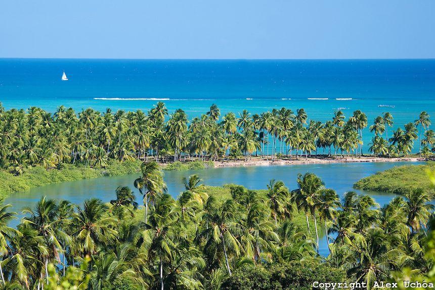 ALAGOAS!: Alagoas... lindo!