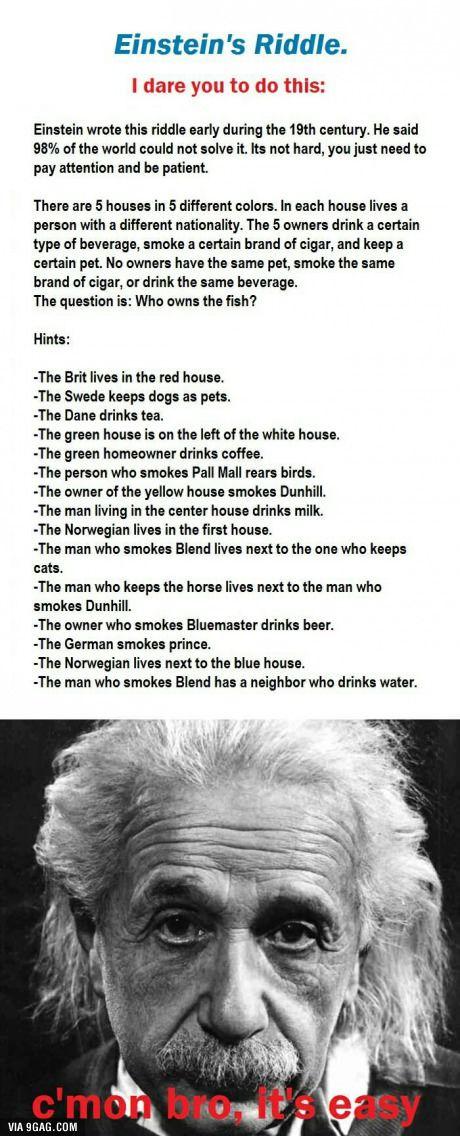 Owns Riddle Who Fish Einstein