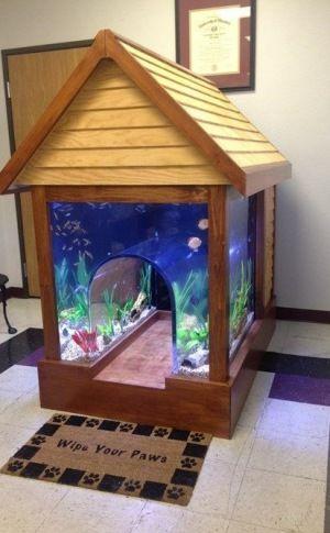 Fish tank dog house