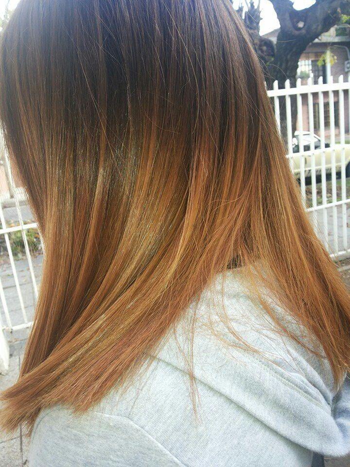 Desgaste de puntas pelo oscuro corto