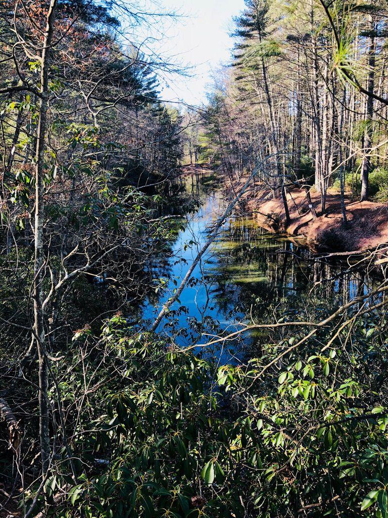 Swift River. Belchertown, Massachusetts. Paul Chandler March 2018.