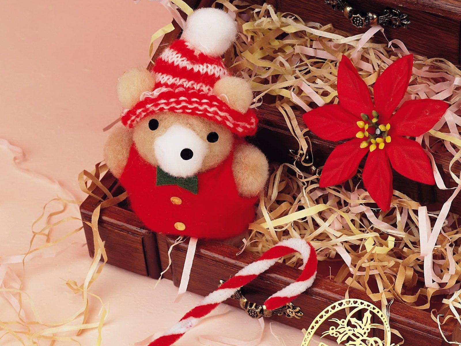 miniature christmas bear in box