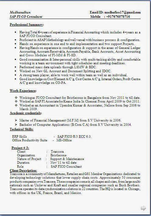 Biodata For Job Pdf Excellent Curriculum Vitae Resume Cv