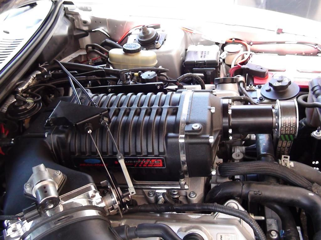 4V Cobra engine w/ 3 4 Whipple twin screw supercharger
