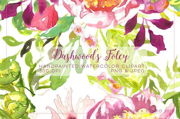Dashwood S Foley Watercolor Clipart By Gibb K Studio On
