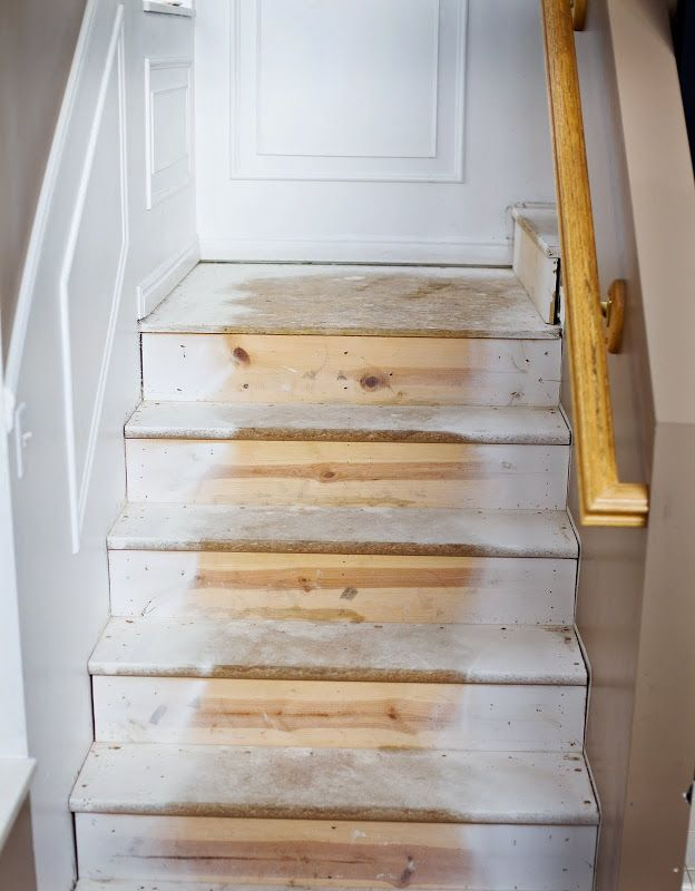 Tidbits From The Tremaynes: Falling Up The Stairs.