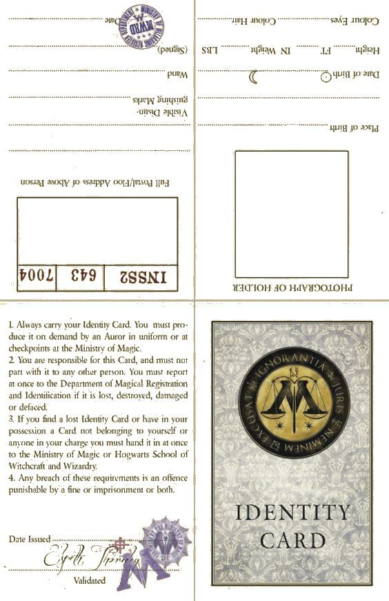 Ministry Of Magic Id Information Page Blank If You Want The Yellowed Look I D Suggest Harry Potter Classroom Harry Potter Crafts Harry Potter Illustrations
