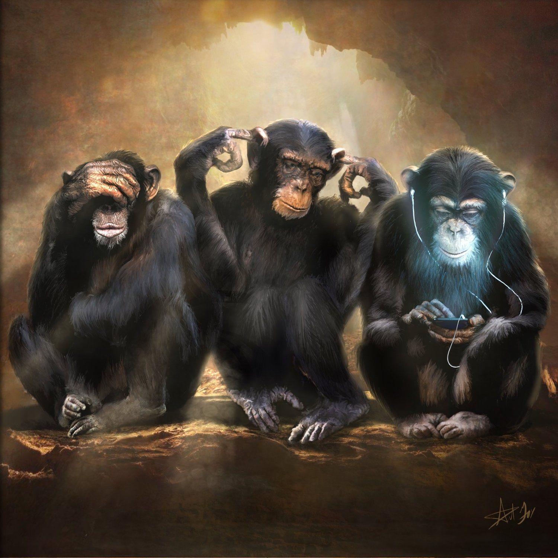 3 Wise Monkeys Monkey Art Three Wise Monkeys Wise Monkeys