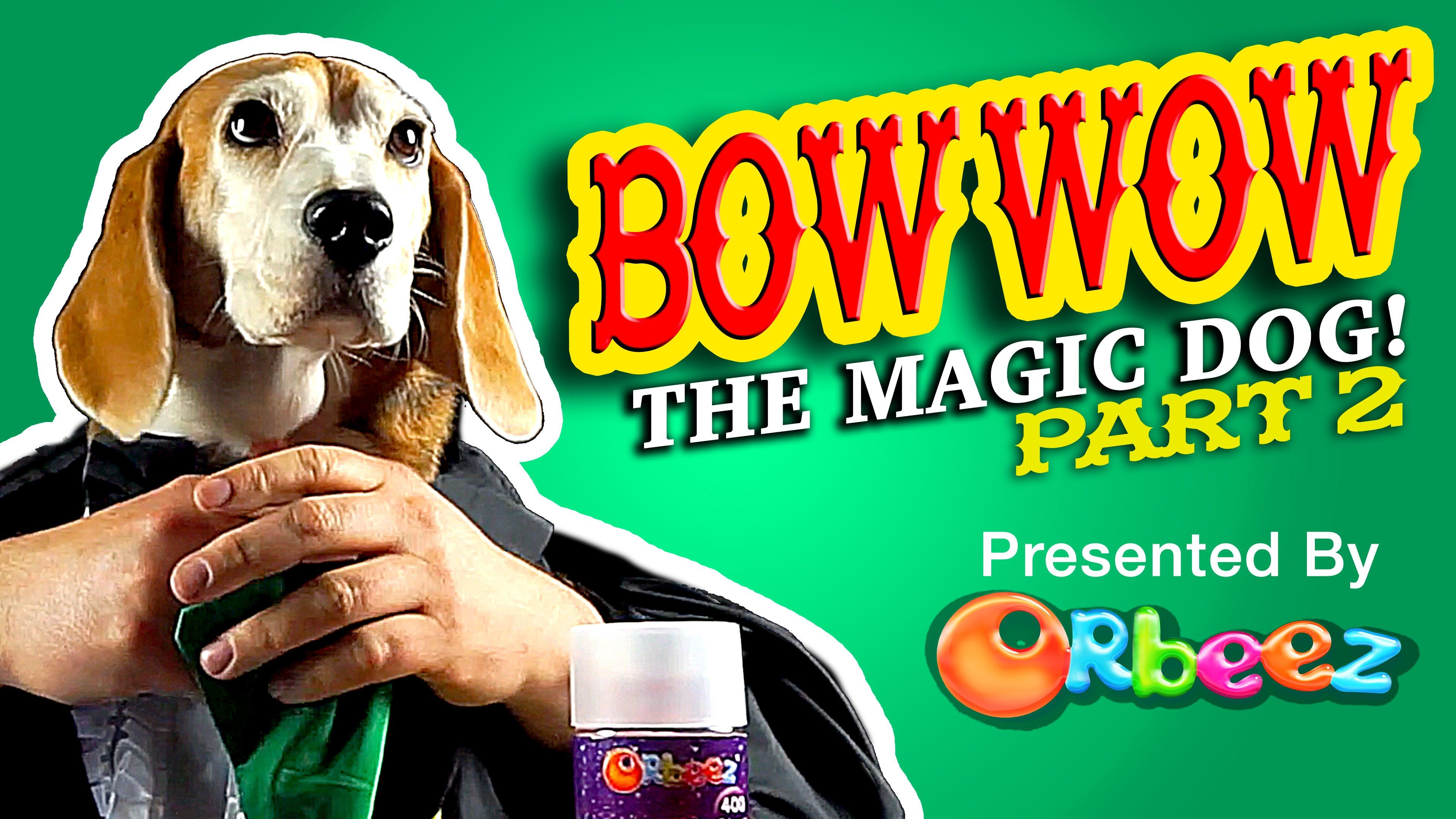 Orbeez Bow Wow Magic Dog Part 2 Official Orbeez Bow Wow Dogs Bows