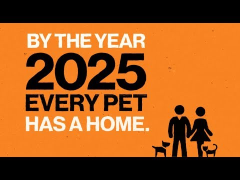 See The Map Please Best Friends Animal Society S Goal Is A No Kill Nation By The Year 2025 Read About Progress Tow With Images Animal Society Losing A Dog National Animal