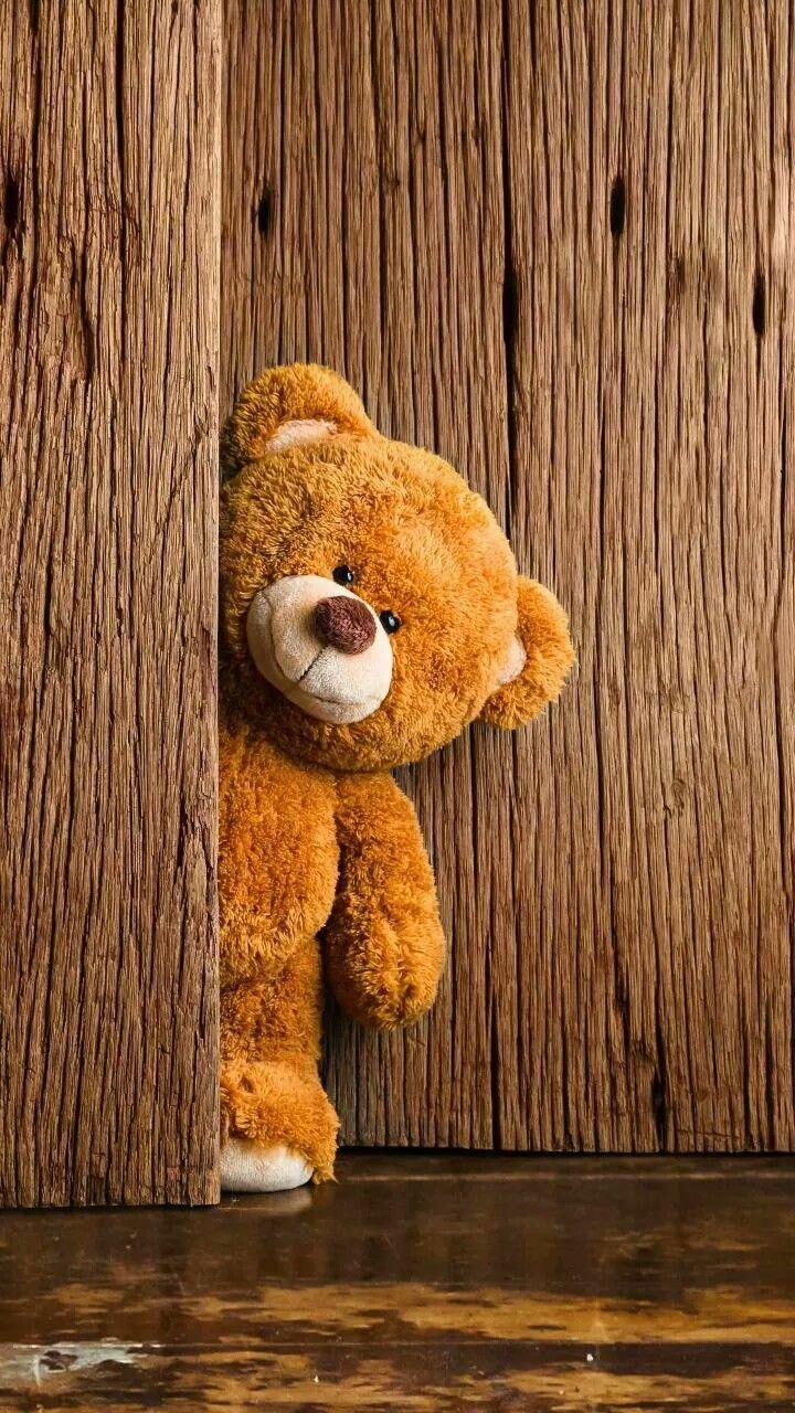 WhatsApp DP, Whatsapp Dp Images Teddy bear wallpaper