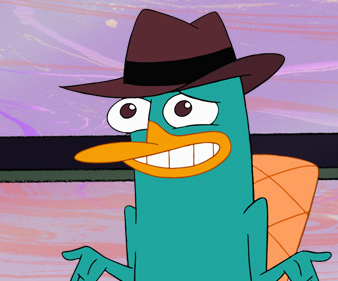 Perry's Awkward face (With images) | Perry the platypus, Phineas ...