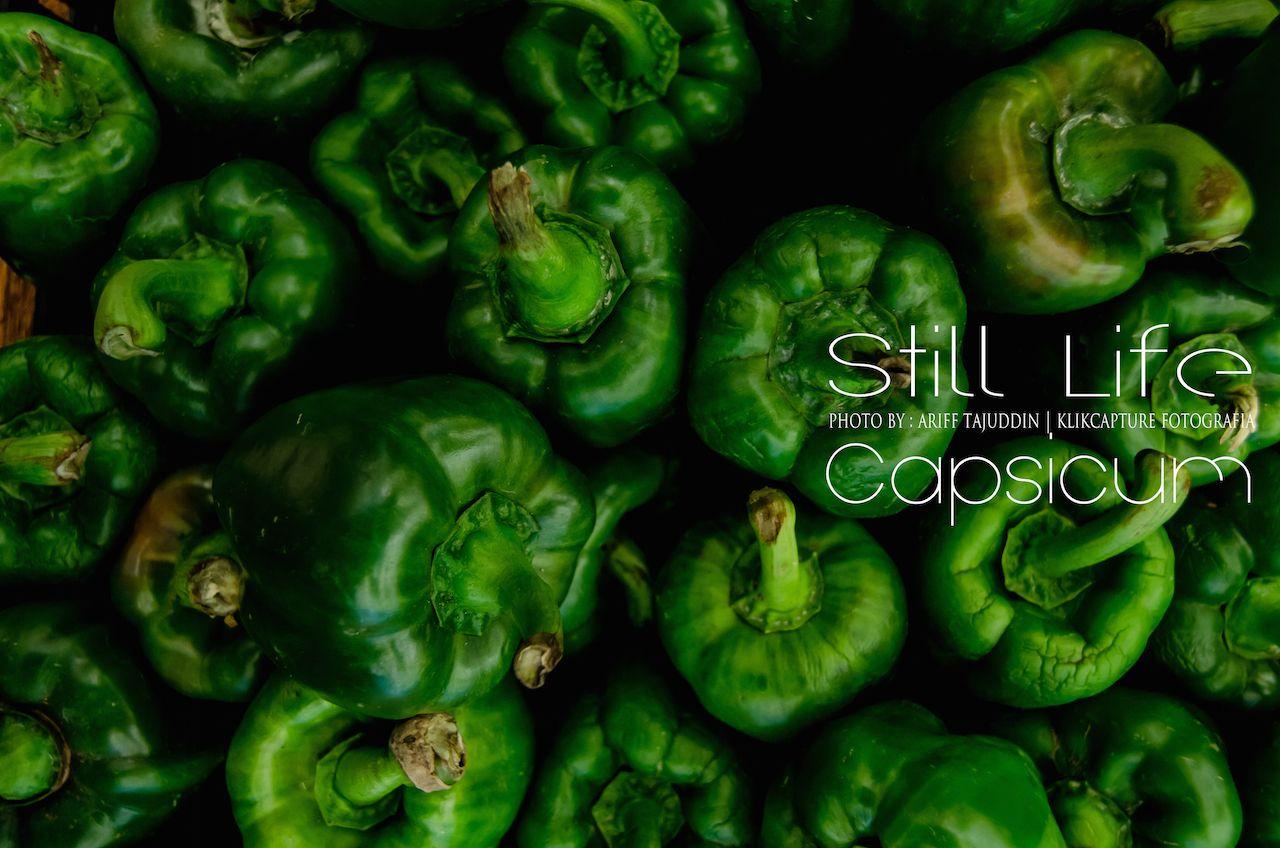 Still Life Green Capsicum Green Capsicum Capsicum Still Life