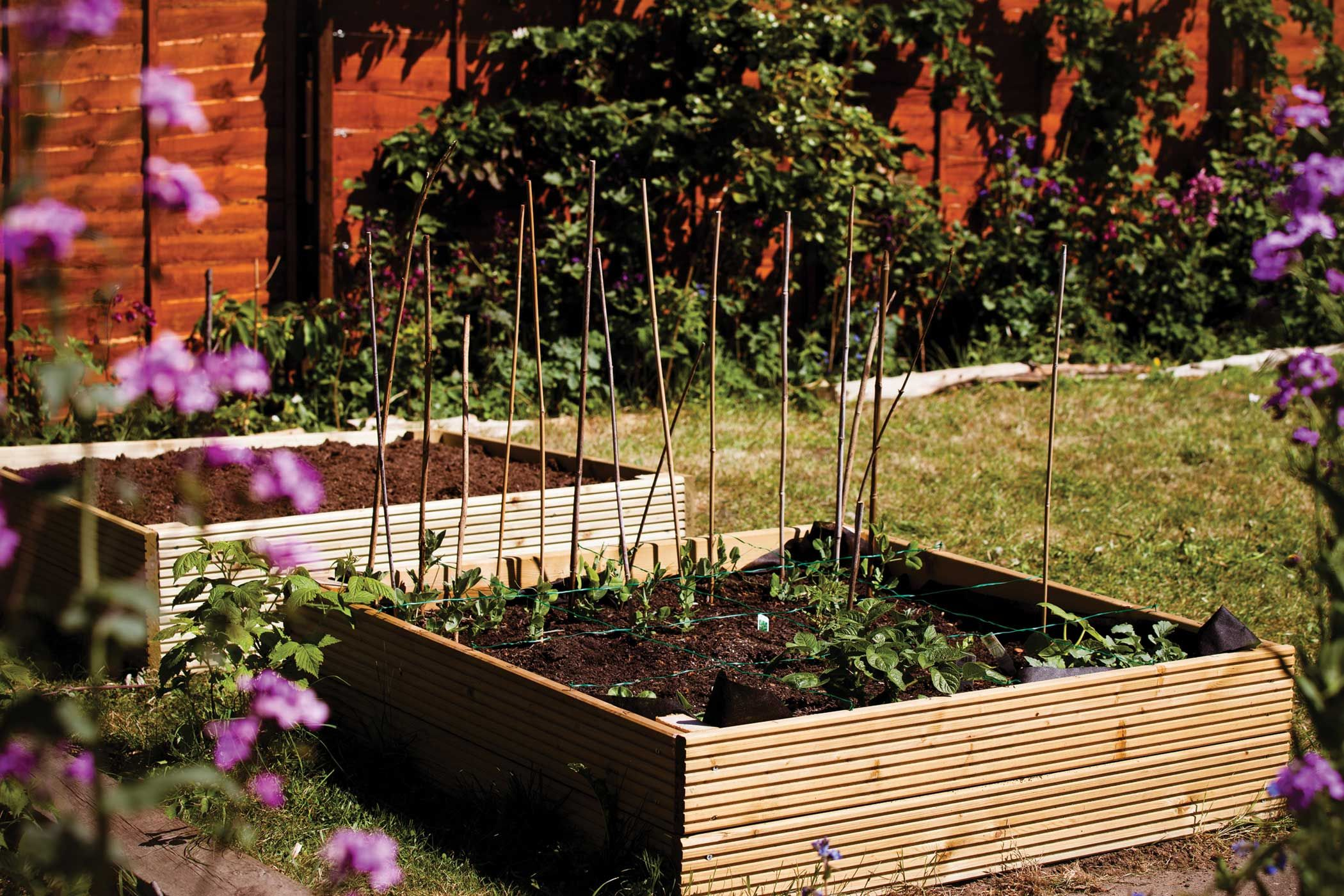 Small-Scale Crop Rotation: Inspired Vegetable Gardening - Garden ...