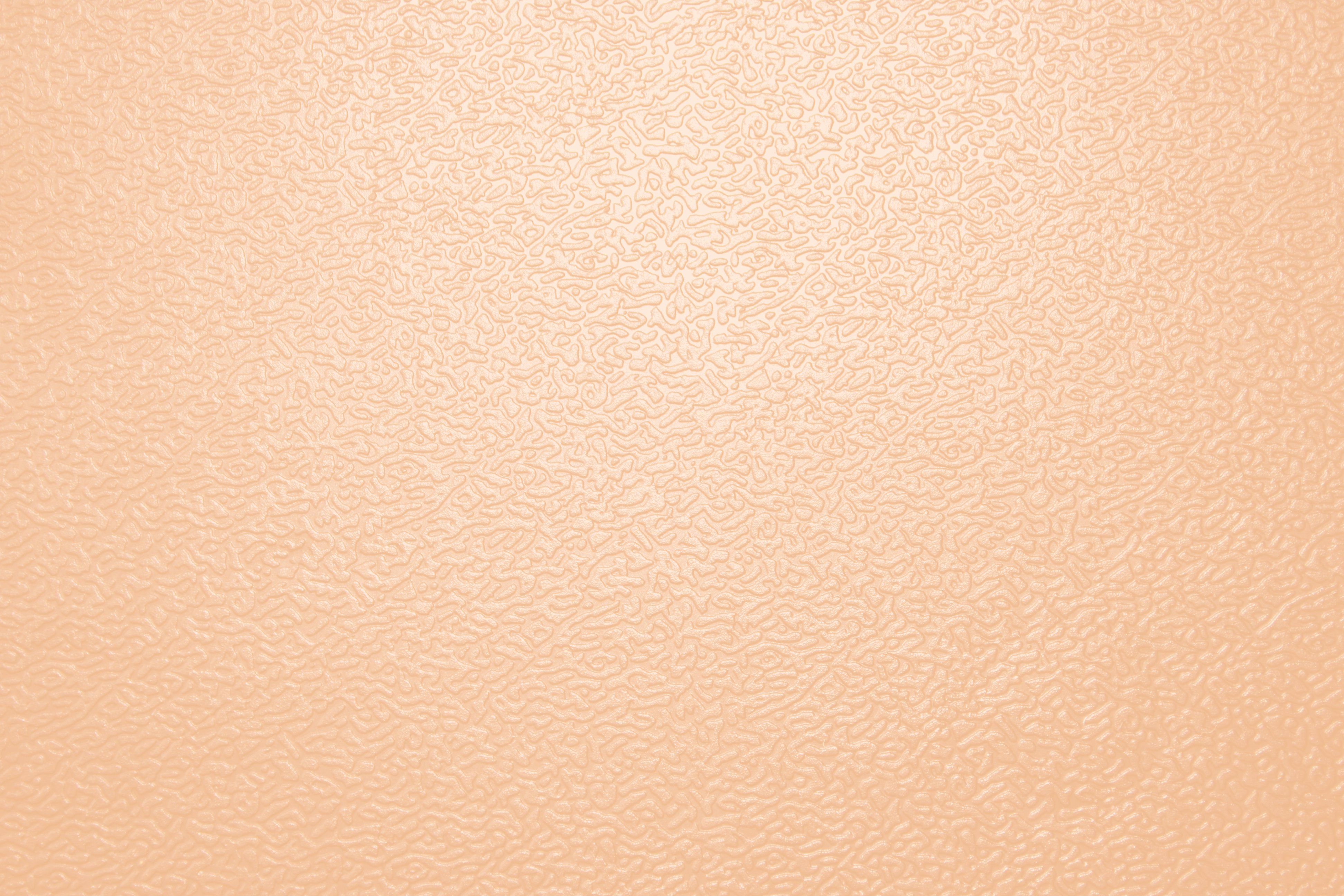Eeek Room Color Light Peach Color Peach Colors Free Photographs