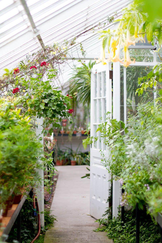 rikki snyder photography blog botanical gardens smith college northampton ma