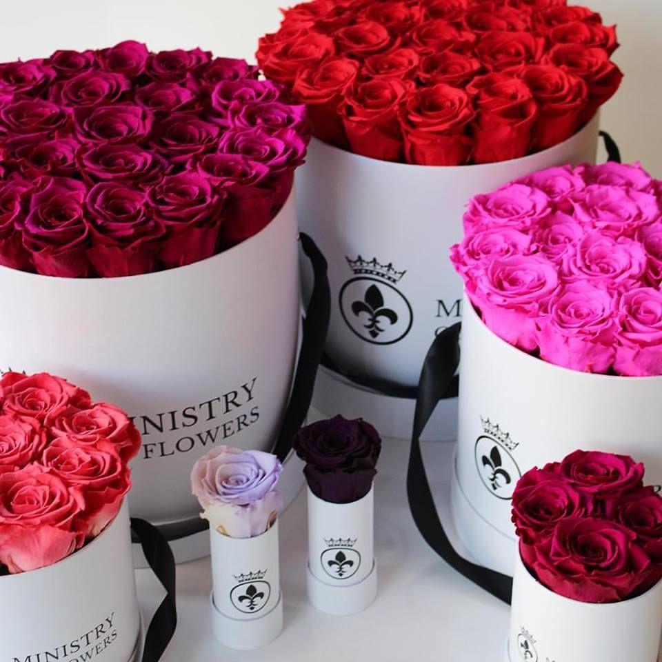 Die Seite Befindet Sich Im Aufbau Rosen Box Rote Rosen Blumenstrauß Rosen