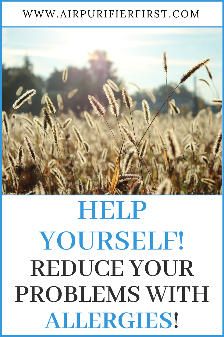 Help Yourself! Reduce Your Problems With Allergies