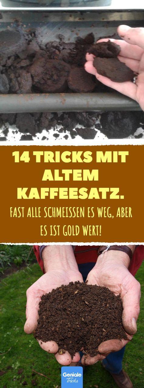 14 trucos con café molido viejo.