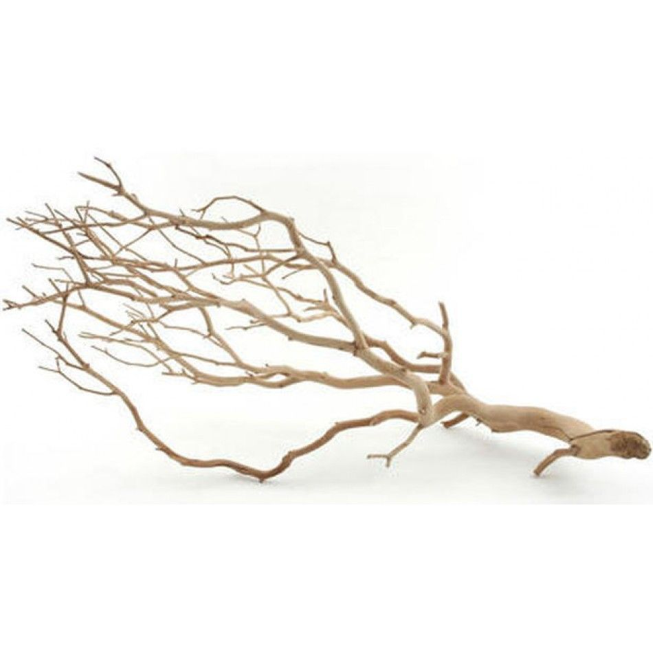 REAL Sandblasted Manzanita Branches - 5 Sizes [Sandblasted Manzanita ...
