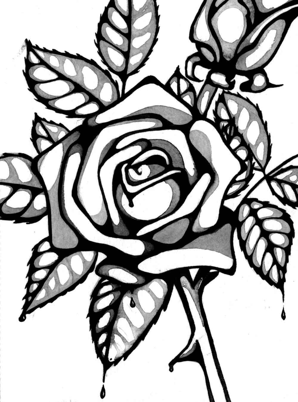 Line Drawing Rose Cliparts.co Coloring pages, Rose