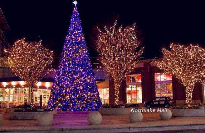 Giant Christmas Tree And Tree Lighting For Shopping Center