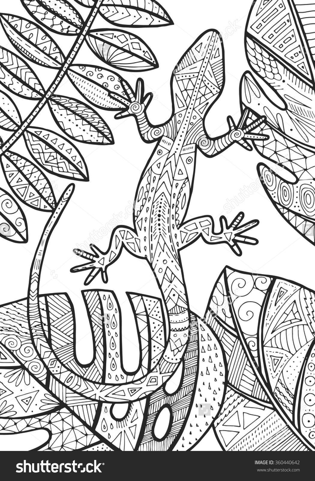 Lizard Tropical Illustration For Adult Coloring Coloring Pages