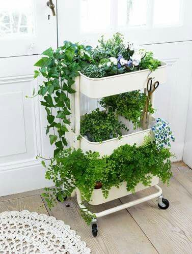 ikea raskog cart with plants artsy love in 2019 plants. Black Bedroom Furniture Sets. Home Design Ideas