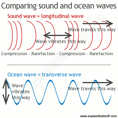 A line artwork comparing longitudinal sound waves and transverse ...