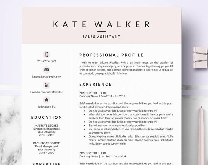 Professional Resume Layout Delectable Professional Resume Cv Templates For Microsoft Word  Resume Cv Review