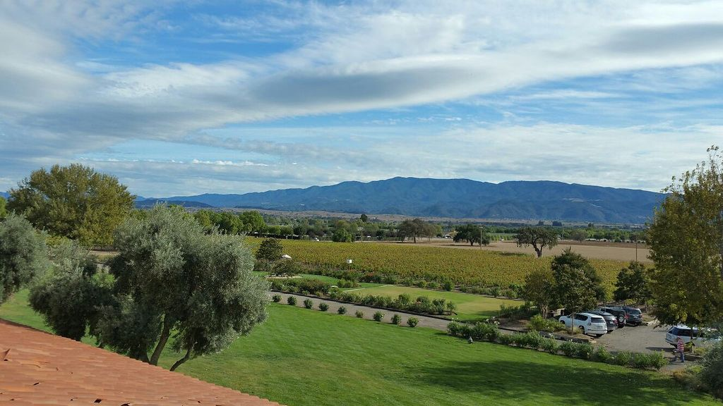 Wine Tour - SB Chauffeuring & Tours - Bridlewood Estate Winery